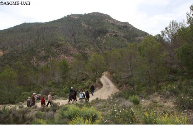 Group of visitors on the path that leads to the archaeological site of La Bastida.